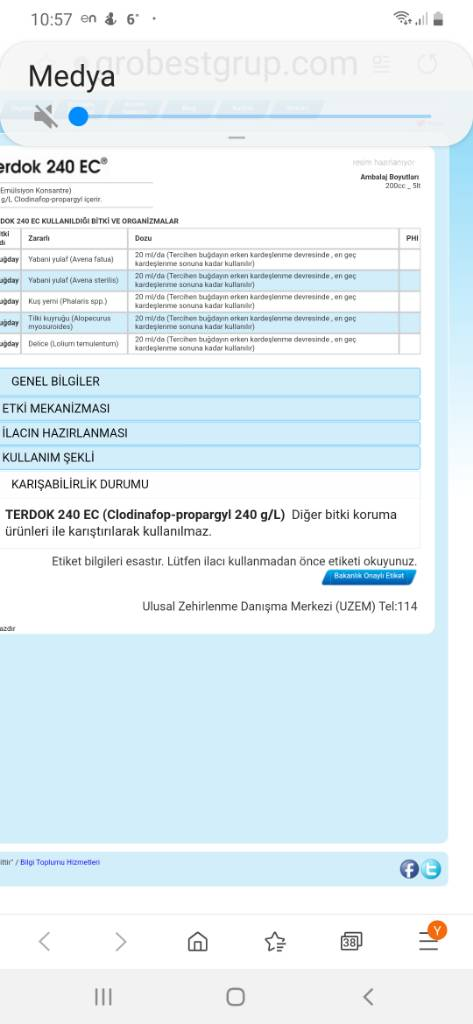 Screenshot_20200224-105705_Samsung%20Internet.jpg